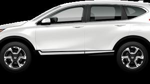 white-300x169